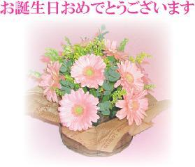 誕生 日 メッセージ 長文
